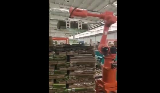 纸箱纸皮码垛搬运机器人应用案例视频